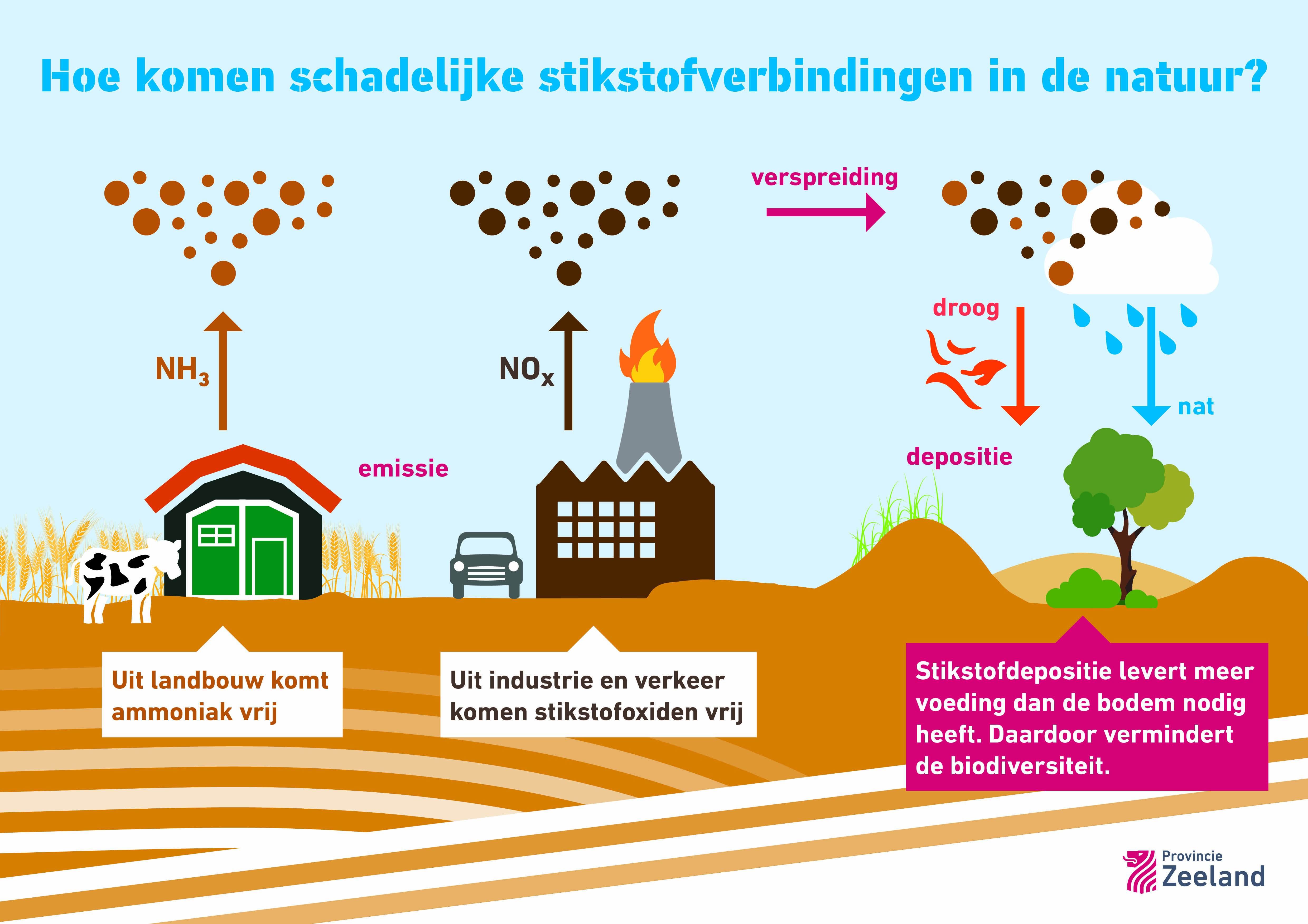 infographic Hoe komen schadelijke stikstofverbindingen in de natuur? Uit landbouw komt ammoniak vrij. Uit industrie en verkeer komen stikstofoxiden vrij. Stikstofdepositie levert meer voeding dan de bodem nodig heeft.