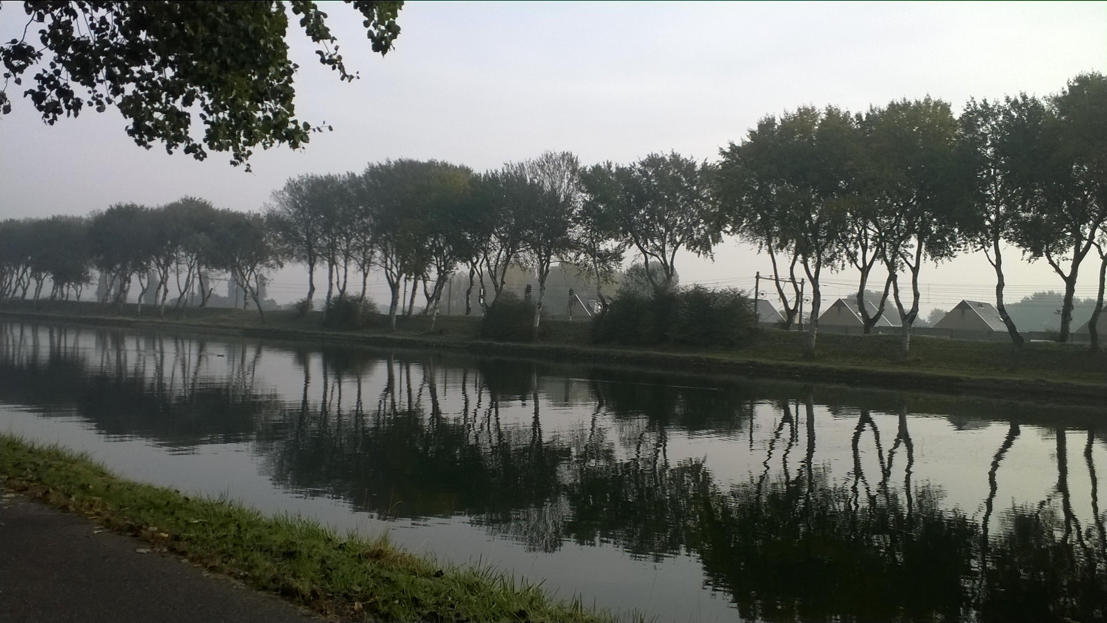 Groenherstel voor Vogeldijk