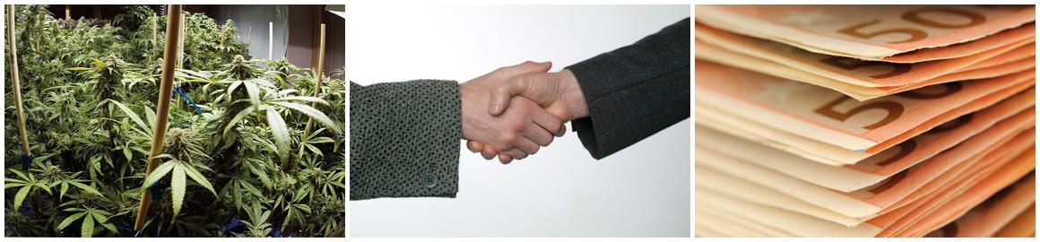 Wiet-deal-geld